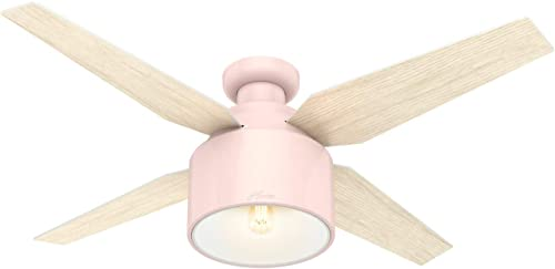Hunter Fan Company 50263 Cranbrook Ceiling Fan