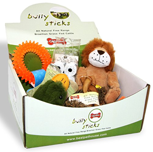 Best Pet Supplies, Inc. Mystery Gift Box for Dogs