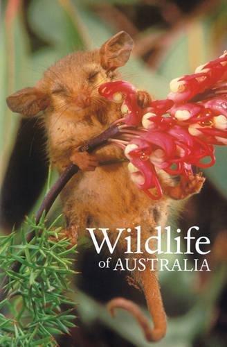 Read Online Wildlife of Australia PDF