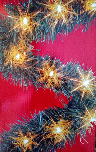 25 Foot Lighted Garland (Lighted Trim)