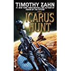 The Icarus Hunt: A Novel