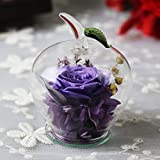 DeFancy Handmade Preserved Fresh Roses Decor with Apple-shaped Glass-Best Gift for Valentine's Day,Mother's Day,Birthday (Purple)