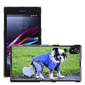 Super Stella Slim PC Hard Case Cover Skin Armor Shell Protection // M00145514 Dog Playing Park Pet Animal // Sony Xperia Z1 L39 C6903 C6906 C6943 C6902