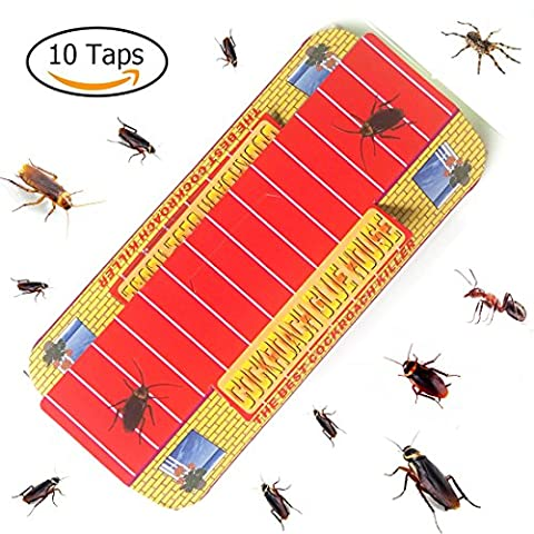 BUYKER Cockroach Motel (10 Traps) Non-Poison Physical Efficient Pest Bug Killer Sticky Spiders & Ants & Roach Glue (Ant Glue Trap)
