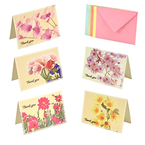 Thank You Cards set 50 Cards 50 Colored Envelopes, 5 Floral Designs Greeting Cards, Blank Foldable Note Cards Watercolor Florals Assorted Pack Greeting Cards for All Occasions 4 x 6 inches By Colorona