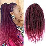 K&G HAIR 18Inch Marley Braids Twist Crochet Braiding Hair Kanekalon Synthetic Afro Kinky Curly Marley Braids Burgundy Hair Extensions(#1B-Bug)