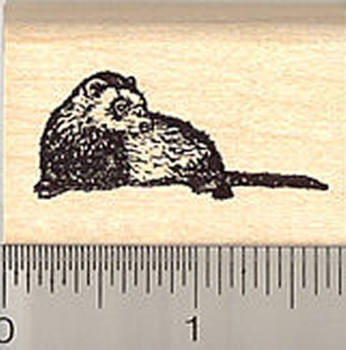 Small Reclining Ferret Rubber Stamp