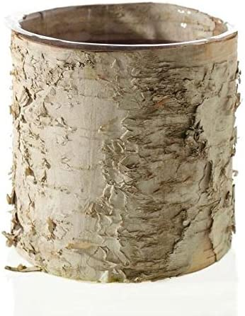 Accent Birch Cylinder Vase Rustic Wedding Decorations – 5.5 Tall