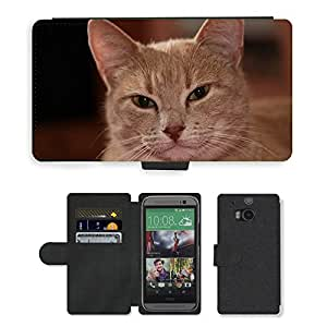 Hot Style Cell Phone Card Slot PU Leather Wallet Case // M00108550 Cat Animal Pet a Creature // HTC One M8