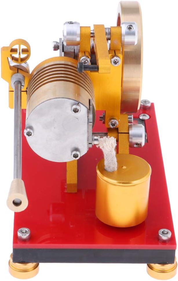 Homyl Prmeium Modell Stirlingmotor Bausatz gro/ß Sterling Engine Hei/ßluftmotor Dampfmaschinen