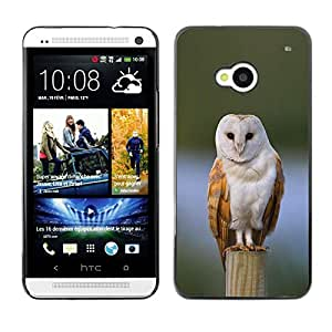 Planetar® ( Owl Winter Snow Perched Feathers White ) HTC One M7 Fundas Cover Cubre Hard Case Cover