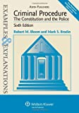 img - for Criminal Procedure: The Constitution and the Police: Examples & Explanations, Sixth Edition book / textbook / text book