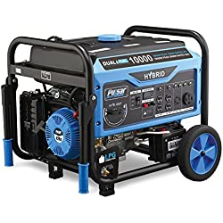 Pulsar Products 10,000W Switch & Go Technology and Electric Start, PG10000B16 Dual-Fuel Portable Generator