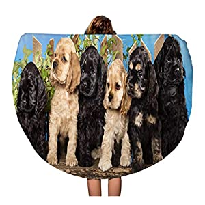 Semtomn 60 Inches Round Beach Towel Blanket Brown Puppy Family American Cocker Spaniel Dogs Funny Litter Travel Circle Circular Towels Mat Tapestry Beach Throw 6