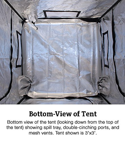 High Rise 8' x 8' Grow Tent