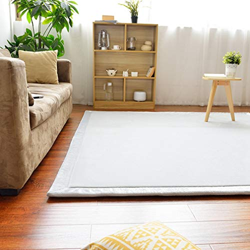 Solid Rectangular Area Rugs Soft Living Room Children Bedroom Rug Coral Fleece Anti-Slip Carpets Home Decor Modern Indoor Outdoor Runners Nursery Rugs 6.5' X 13'