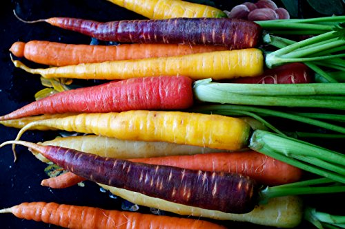 Rainbow Mix Carrot Seeds Choices to 1 LB Easy Grow Mix colors USA #258 (1300 - Colors To Mix