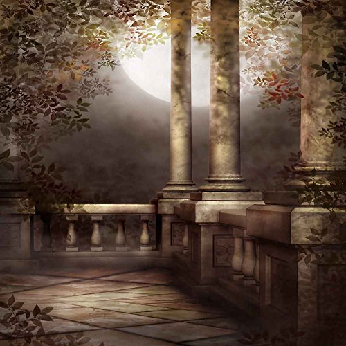 GladsBuy Strong Pillars 10' x 10' Digital Printed Photography Backdrop Arches or Pillars Theme Background YHB-125 by GladsBuy