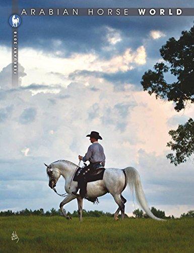 Large Product Image of Arabian Horse World