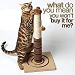 4 Paws Stuff Tall Cat Scratching Post Cat Interactive Toys - Cat Scratch Post Cats Kittens - Plush Sisal Scratch Pole Cat Scratcher - 22 inches (Beige) 16