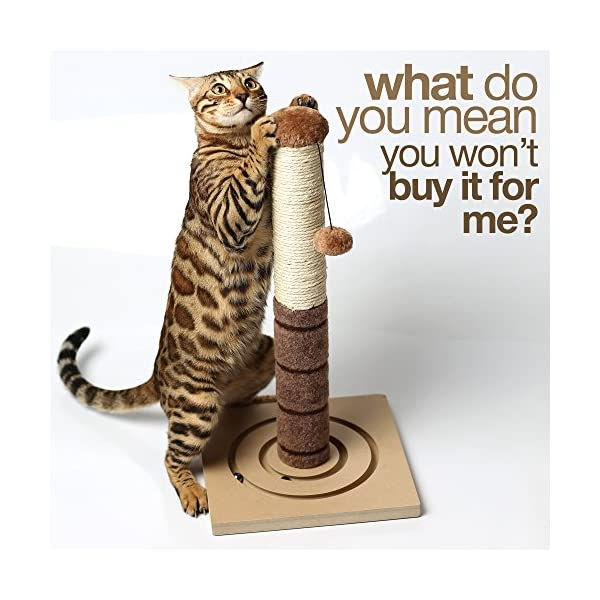 4 Paws Stuff Tall Cat Scratching Post Cat Interactive Toys - Cat Scratch Post Cats Kittens - Plush Sisal Scratch Pole Cat Scratcher - 22 inches (Beige) 7
