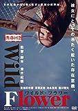 Japanese Movie - Seishun H2 Wild Flower [Japan DVD] DABA-4166