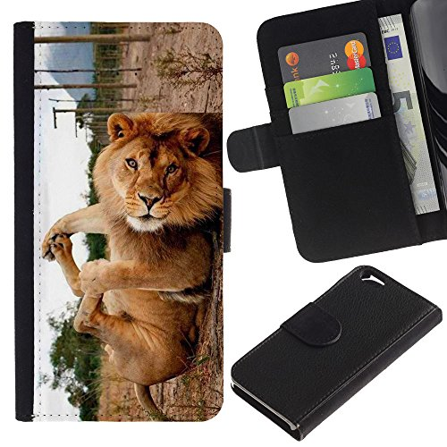 EuroCase - Apple Iphone 6 4.7 - Cute Funny Lion Playing - Cuir PU Coverture Shell Armure Coque Coq Cas Etui Housse Case Cover