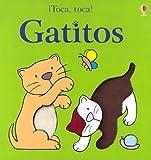 Gatitos, Fiona Watt and Rachel Wells, 0746050917