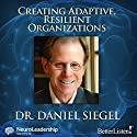 Creating Adaptive, Resilient Organizations Audiobook by Daniel J. Siegel Narrated by Daniel J. Siegel