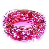 ER CHEN(TM) 66ft Led String Lights,200 Led Starry Lights on 20m Copper Wire String Lights + 12V DC Power Adapter(Pink)