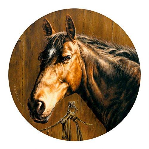 Thirstystone Drink Coaster Set, Horse Portrait