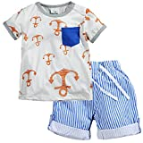 Fiream Little Boys' Cotton Clothing Short Sets(8001TZ,5)