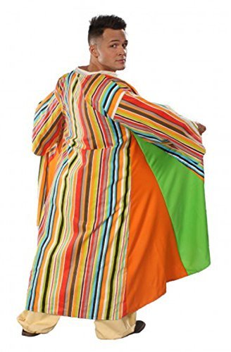 Coat of Many Colors Costume (One-Size Adult (40-44)) (Joseph Adult Mens Costume)