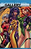 img - for Wildstorm Fine Arts: The Gallery Collection book / textbook / text book