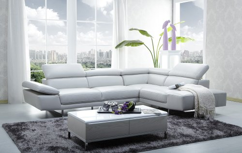 1717 Sectional Sofa with Adjustable Headrest