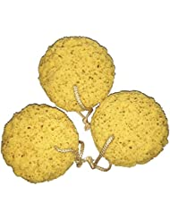 Exfoliating Foam Sea Sponge 5 Inch (Pack of 3) Natural Feel