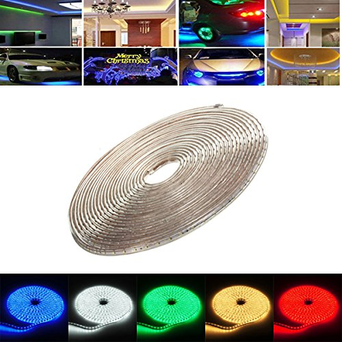 220V Led Rope Light - 5