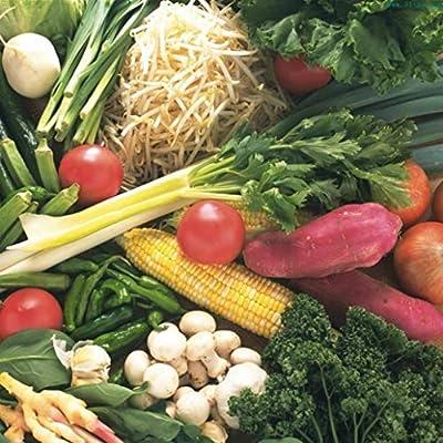 discountstore145 200Pcs Mixed Bonsai Organic Vegetable Seeds Nutritious Garden Yard Roof Plant - Vegetables Seeds : Garden & Outdoor