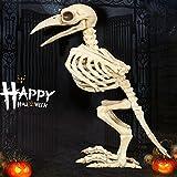 Skeleton Raven100% Plastic Animal Skeleton Bones for Horror Creepy Halloween Decoration Event & Party Supplies