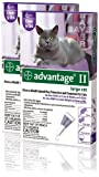 12 MONTH Advantage II Flea Control Large Cat (for cats over 9 lbs) PURPLE, My Pet Supplies