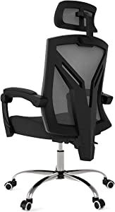 Hbada Ergonomic Office Chair - Modern High-Back Desk Chair - Reclining Computer Chair with Lumbar Support - Adjustable Seat Cushion & Headrest- Breathable Mesh Back - Black