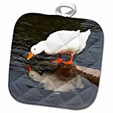 3D Rose Mirror-White Duck Pot Holder, 8'' x 8''