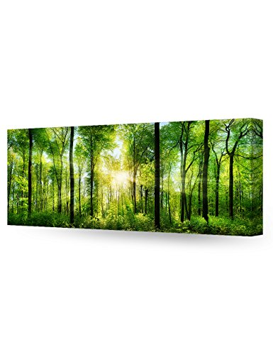 DecorArts Canvas Prints sunshine Giclee Decor 30x12x1 5