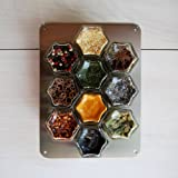 Gneiss Spice Small Stainless Wall Plate Base for Magnetic Spice Jars, 6x8 Inches (Jars Not Included)