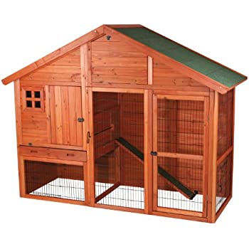 Amazon Com Trixie Pet Products Rabbit Hutch With Gabled