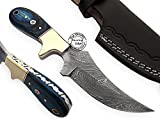 Beautiful Blue Wood Handmade Damascus Steel Hunting Skinner Knife Prime Quality, Promotional Price