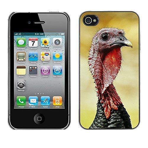 Premio Sottile Slim Cassa Custodia Case Cover Shell // F00018649 gobbler significative // Apple iPhone 4 4S 4G