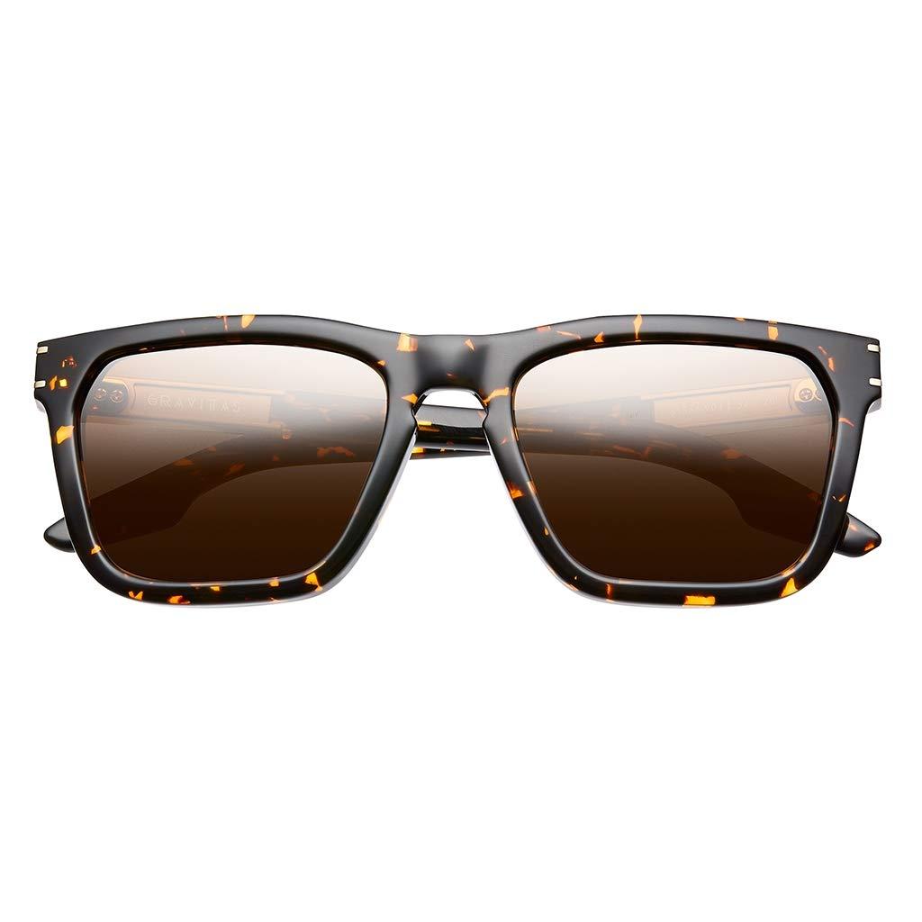 IVI Gravitas Sunglasses (Ambercomb Tortoise)