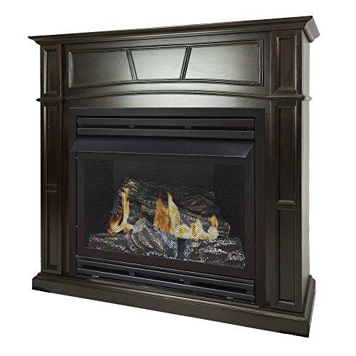 pleasant hearth propane fireplace - 2