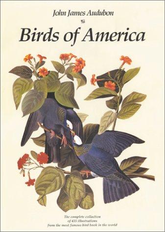 Risultati immagini per birds of america